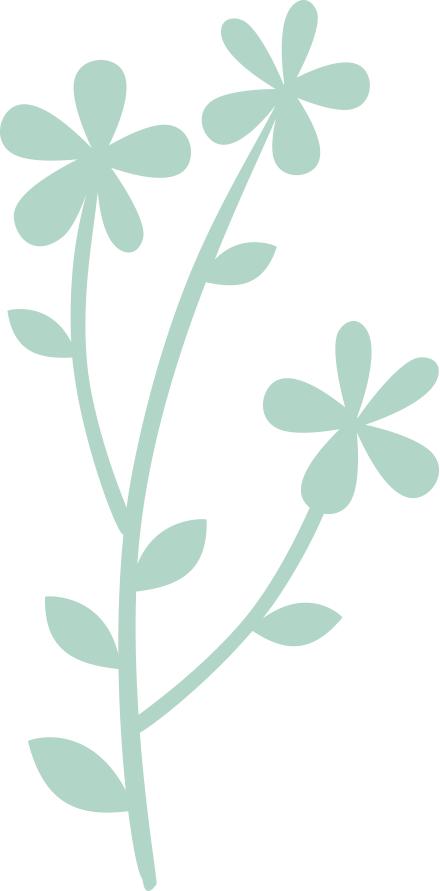 flower illustrations 01