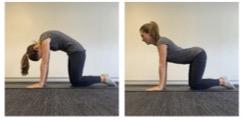 pelvic floor exercises 2